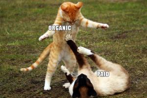paid vs organic reach case study Facebook advertising